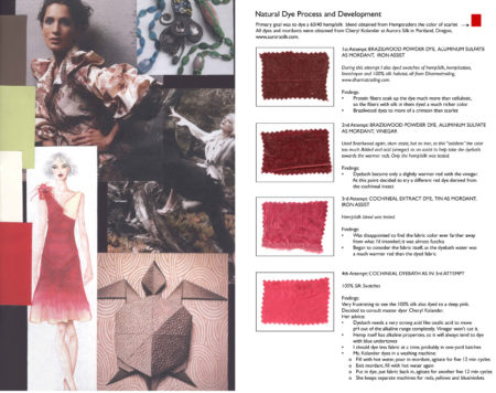 Natural Dye Experiments